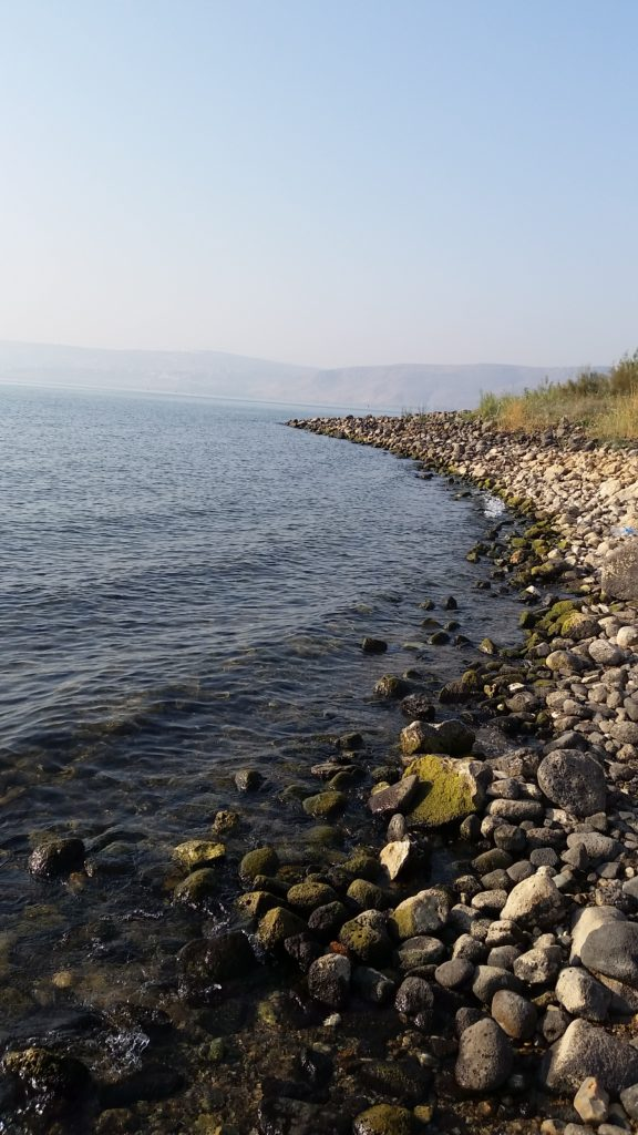 The edge of the Sea of Galilee